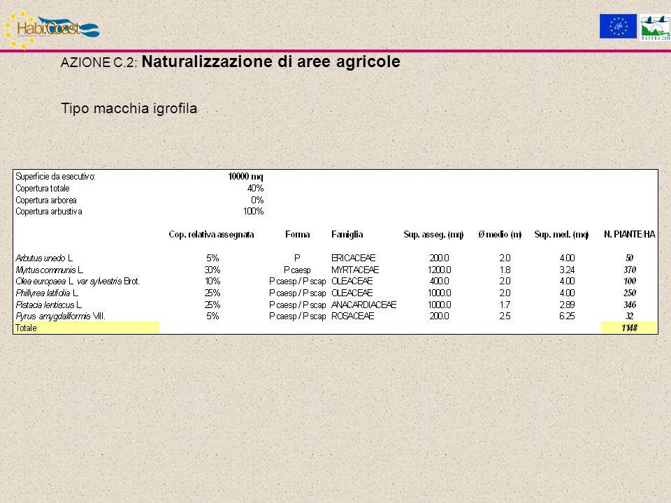 AZIONE C.2: Naturalizzazione di aree agricole Tipo macchia igrofila