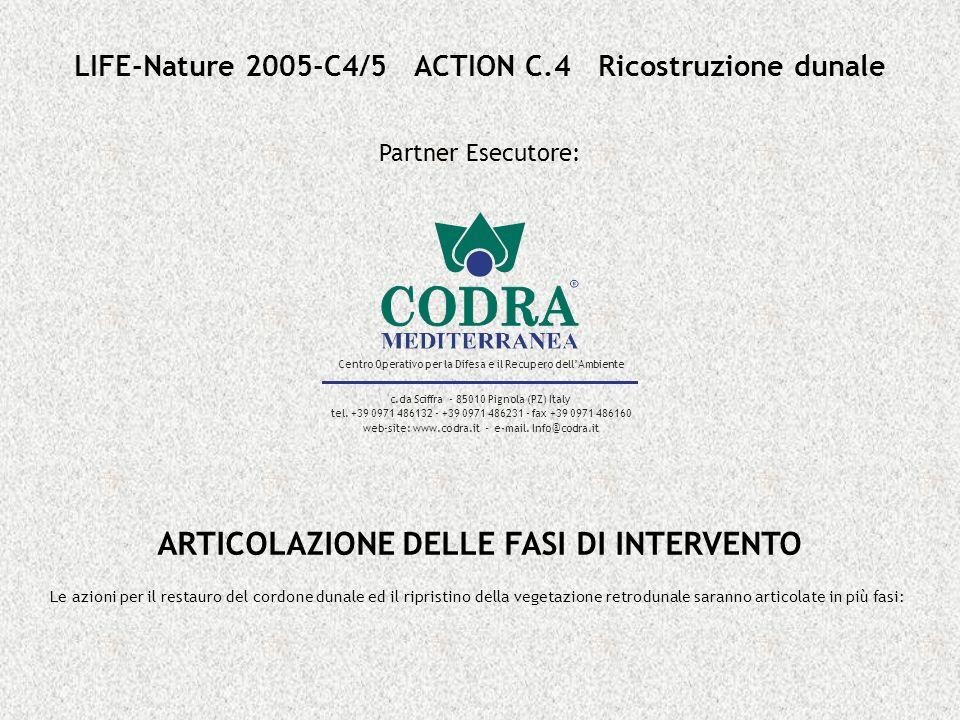 ARTICOLAZIONE DELLE FASI DI INTERVENTO Le azioni per il restauro del cordone dunale ed il ripristino della vegetazione retrodunale saranno articolate in più fasi: LIFE-Nature 2005-C4/5 ACTION C.4 Ricostruzione dunale Partner Esecutore: Centro Operativo per la Difesa e il Recupero dellAmbiente c.da Sciffra - 85010 Pignola (PZ) Italy tel.