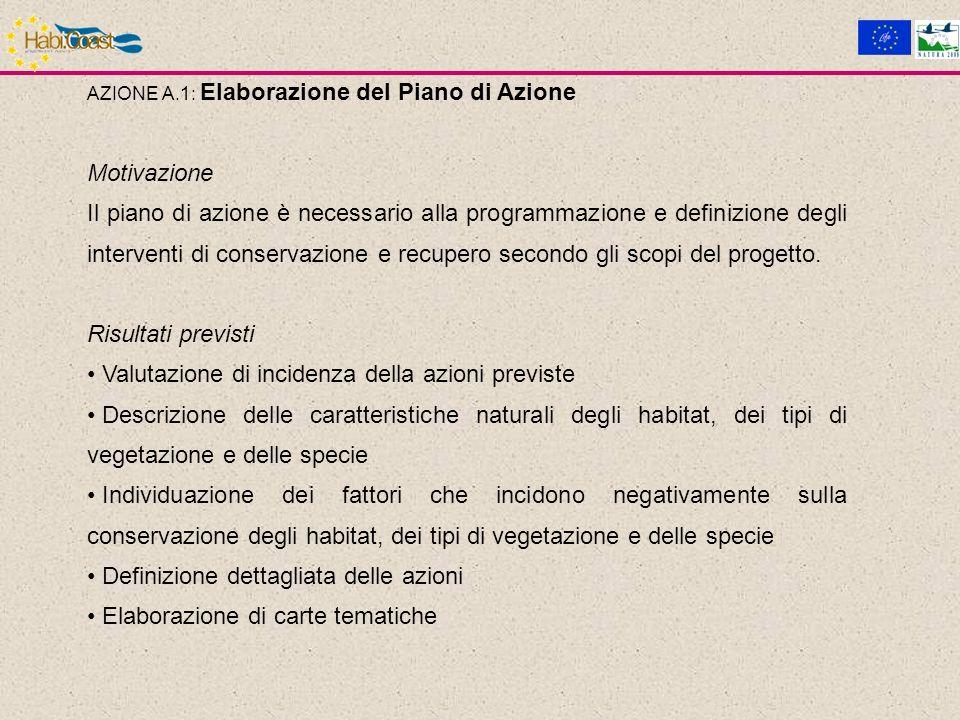 AZIONE A.1: Elaborazione del Piano di Azione Motivazione Il piano di azione è necessario alla programmazione e definizione degli interventi di conservazione e recupero secondo gli scopi del progetto.