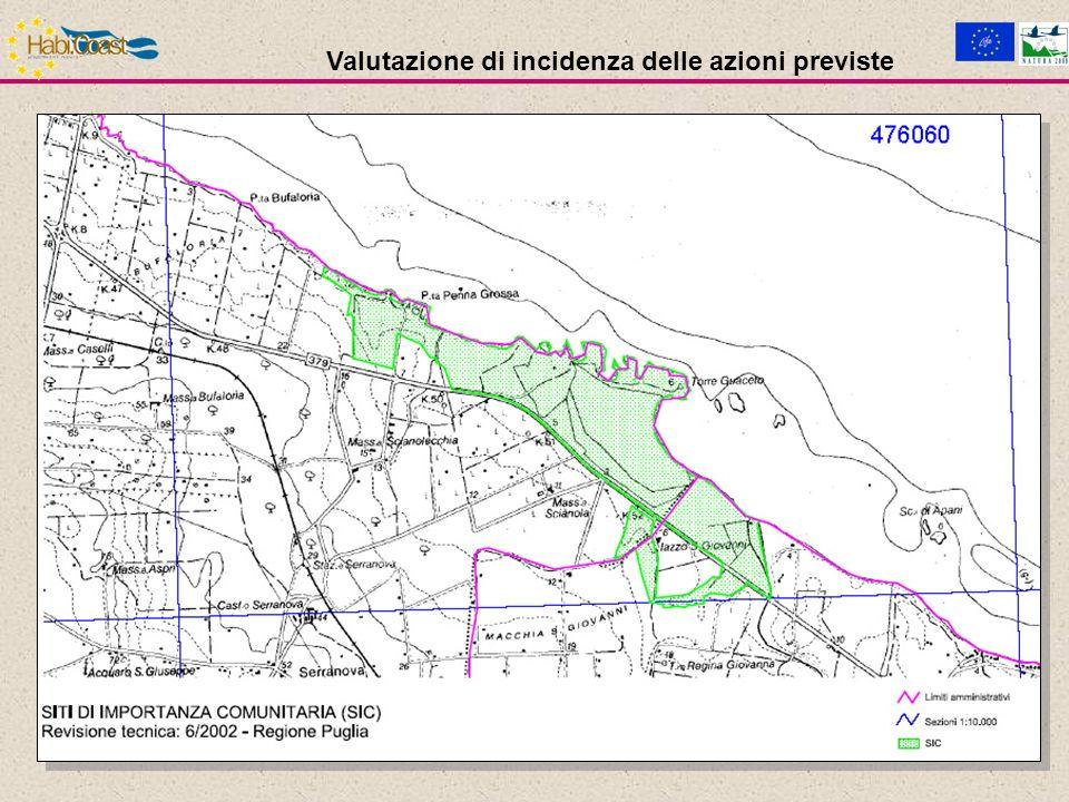 Conversione delle formazioni a tamarici (Tamarix africana) in macchia aperta [AZIONE C.3]