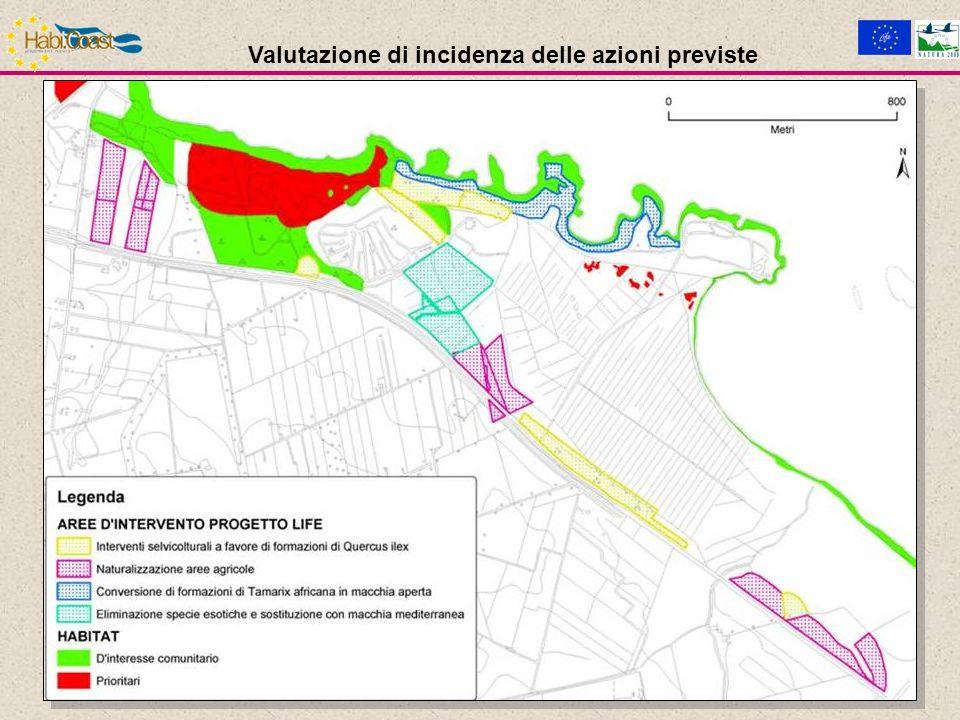 AZIONE C.4: Ricostituzione dunale Motivazioni L ambiente della duna è attualmente sottoposto a processi di erosione biologica e strutturale.