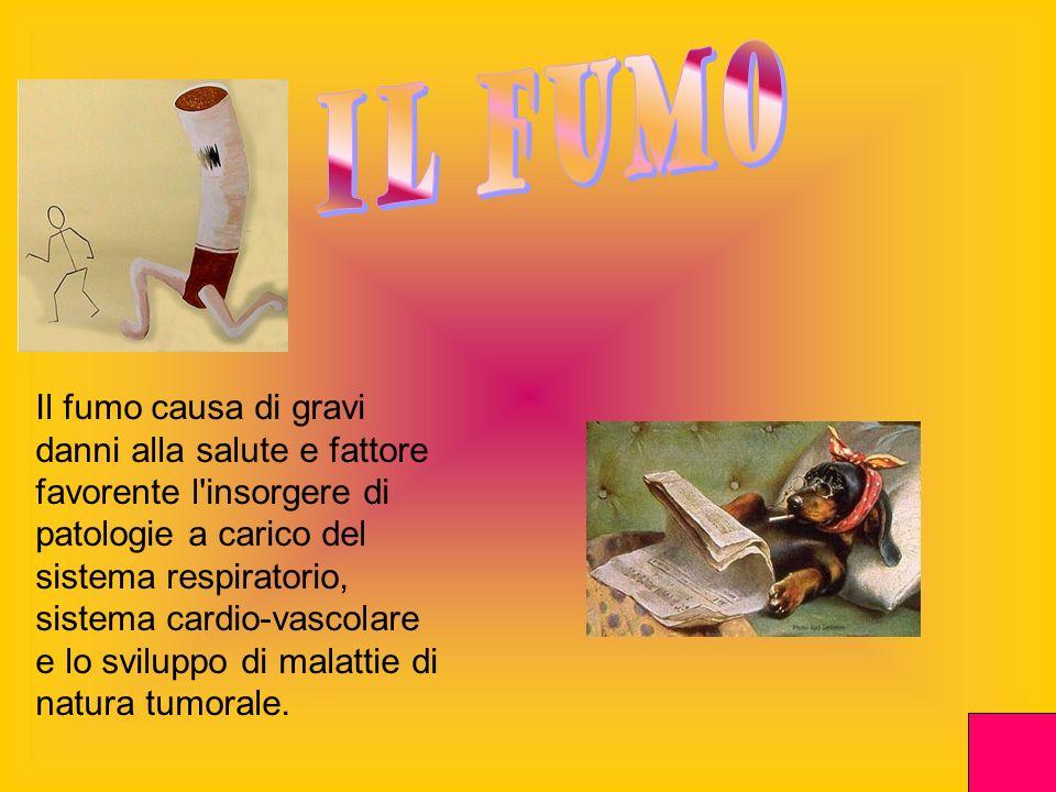 Il fumo causa di gravi danni alla salute e fattore favorente l'insorgere di patologie a carico del sistema respiratorio, sistema cardio-vascolare e lo