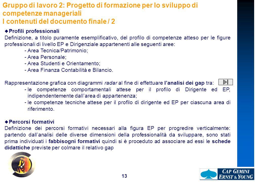 13 Profili professionali Definizione, a titolo puramente esemplificativo, del profilo di competenze atteso per le figure professionali di livello EP e