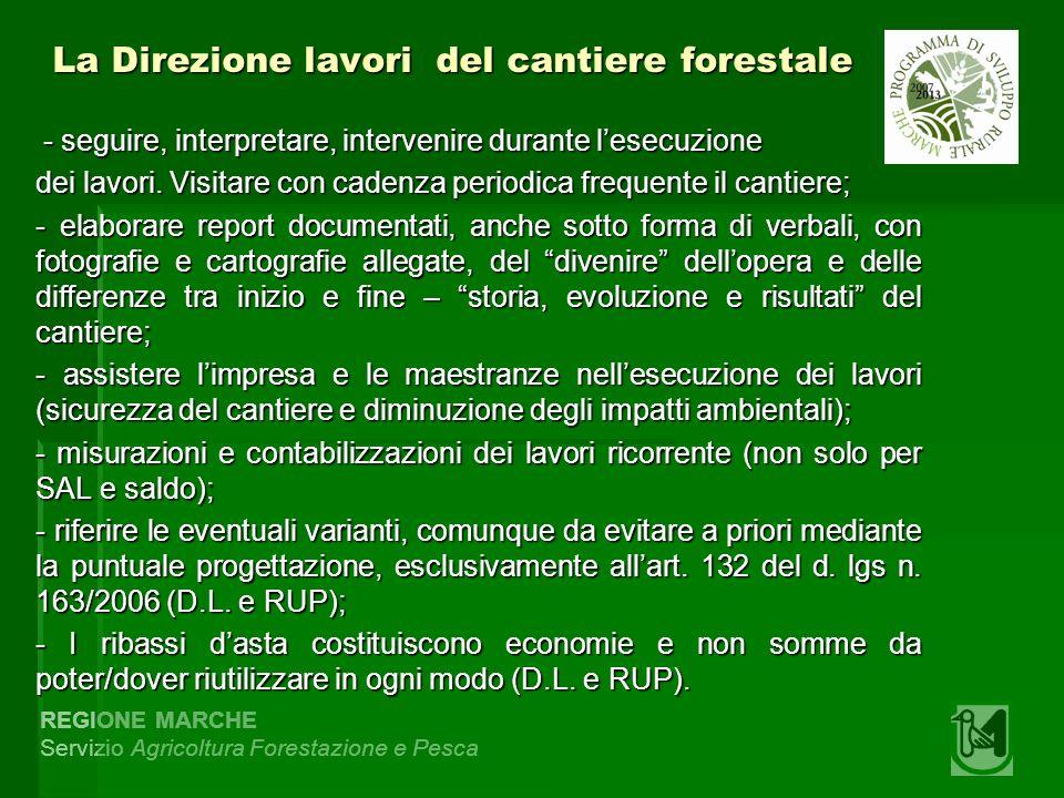 REGIONE MARCHE Servizio Agricoltura Forestazione e Pesca La Direzione lavori del cantiere forestale - seguire, interpretare, intervenire durante lesec