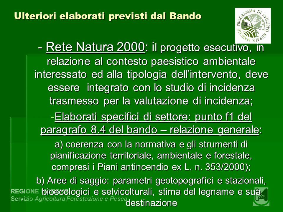 REGIONE MARCHE Servizio Agricoltura Forestazione e Pesca Ulteriori elaborati previsti dal Bando - Rete Natura 2000: i l progetto esecutivo, in relazio