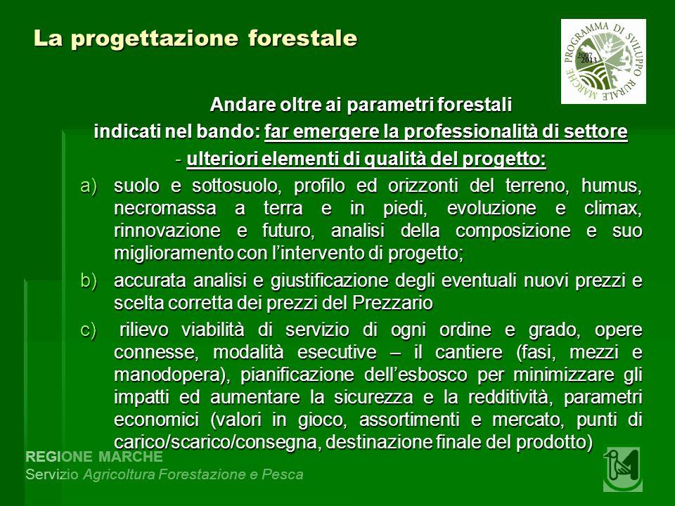 REGIONE MARCHE Servizio Agricoltura Forestazione e Pesca La progettazione forestale Andare oltre ai parametri forestali indicati nel bando: far emerge