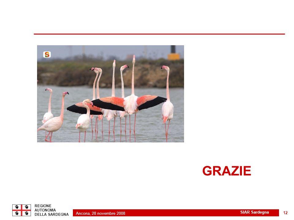 Ancona, 28 novembre 2008 2 REGIONE AUTONOMA DELLA SARDEGNA SIAR Sardegna 12 GRAZIE
