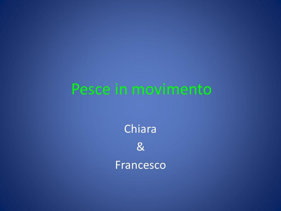 Pesce in movimento Chiara & Francesco
