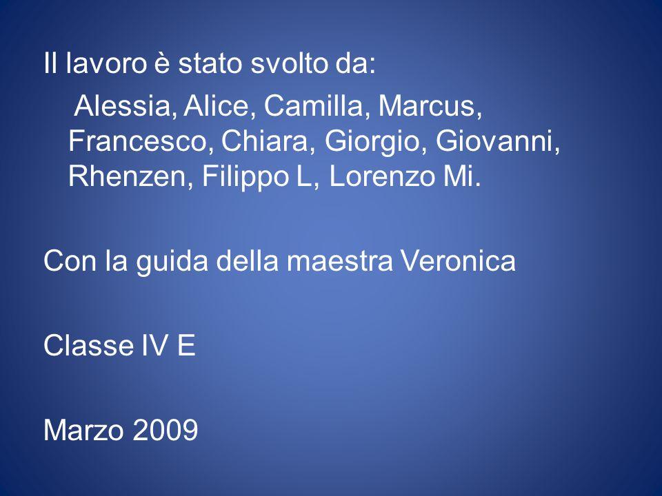 Il lavoro è stato svolto da: Alessia, Alice, Camilla, Marcus, Francesco, Chiara, Giorgio, Giovanni, Rhenzen, Filippo L, Lorenzo Mi.