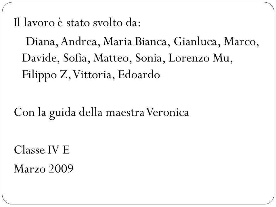 Il lavoro è stato svolto da: Diana, Andrea, Maria Bianca, Gianluca, Marco, Davide, Sofia, Matteo, Sonia, Lorenzo Mu, Filippo Z, Vittoria, Edoardo Con