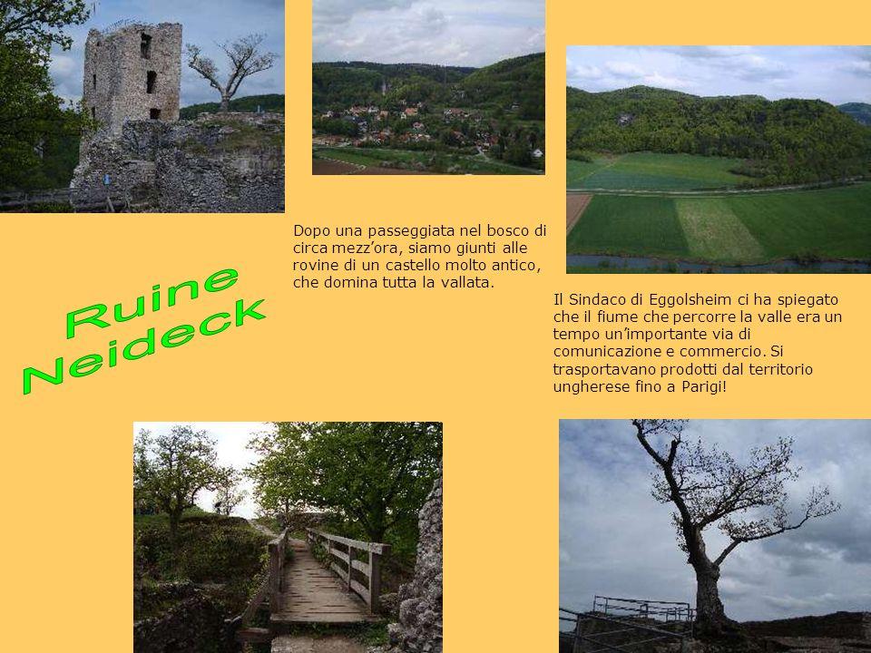 Dopo una passeggiata nel bosco di circa mezzora, siamo giunti alle rovine di un castello molto antico, che domina tutta la vallata.