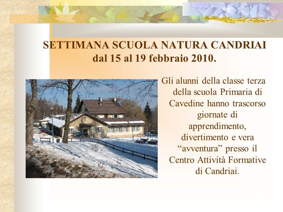 SETTIMANA SCUOLA NATURA CANDRIAI dal 15 al 19 febbraio 2010. Gli alunni della classe terza della scuola Primaria di Cavedine hanno trascorso giornate