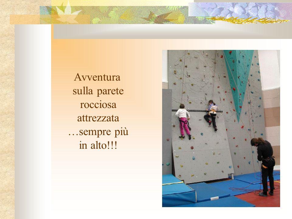 Avventura sulla parete rocciosa attrezzata …sempre più in alto!!!