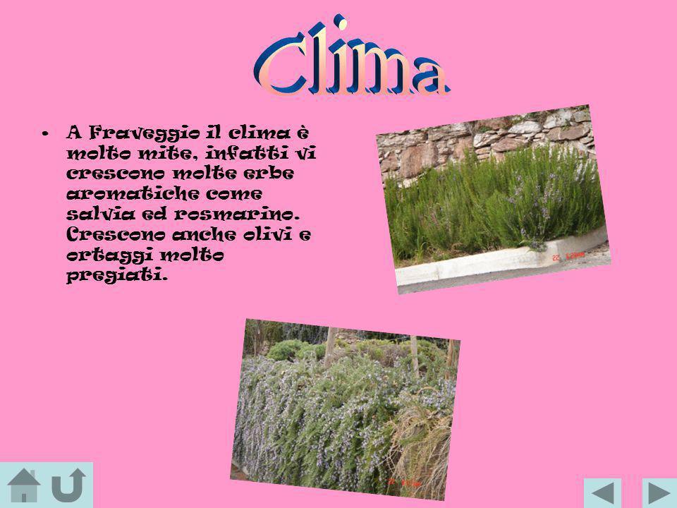 A Fraveggio il clima è molto mite, infatti vi crescono molte erbe aromatiche come salvia ed rosmarino. Crescono anche olivi e ortaggi molto pregiati.