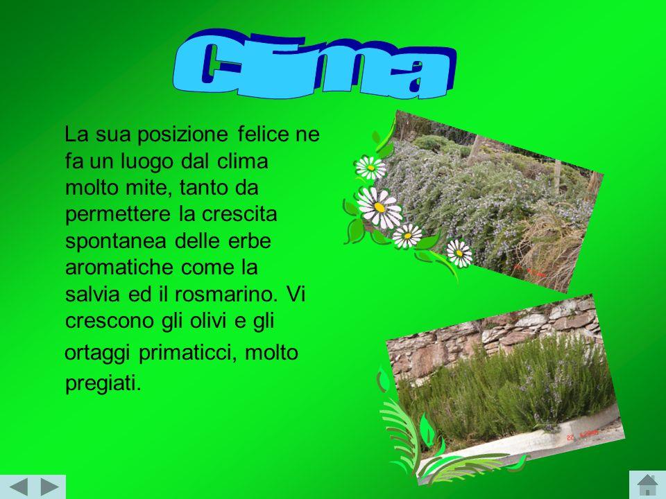 La sua posizione felice ne fa un luogo dal clima molto mite, tanto da permettere la crescita spontanea delle erbe aromatiche come la salvia ed il rosmarino.