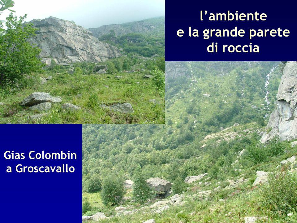 lambiente e la grande parete di roccia Gias Colombin a Groscavallo