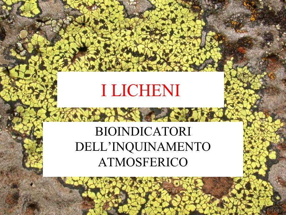 BIOMONITORAGGIO AMBIENTALE Insieme di tecniche basate sulluso di BIOINDICATORI (organismi sensibili a un determinato fattore ambientale) per il rilevamento indiretto di fattori ambientali.