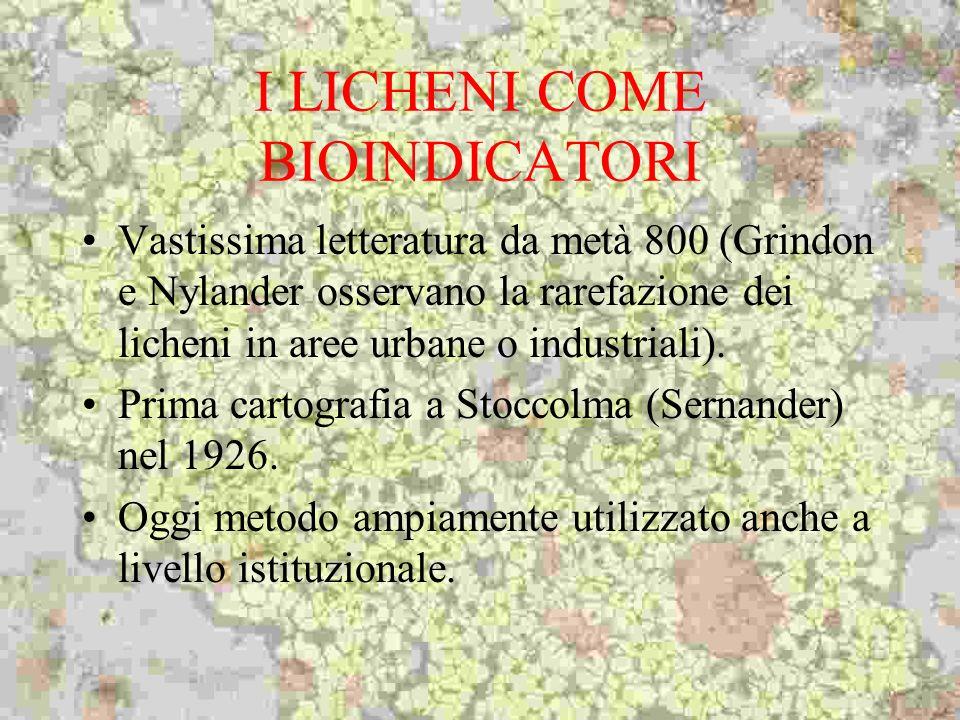 I LICHENI COME BIOINDICATORI Vastissima letteratura da metà 800 (Grindon e Nylander osservano la rarefazione dei licheni in aree urbane o industriali)