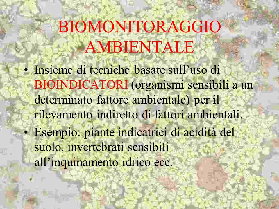 BIOMONITORAGGIO AMBIENTALE Insieme di tecniche basate sulluso di BIOINDICATORI (organismi sensibili a un determinato fattore ambientale) per il rileva