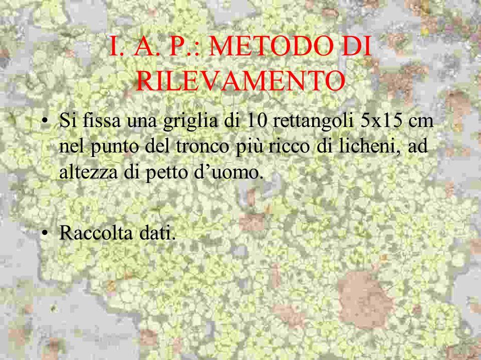 I. A. P.: METODO DI RILEVAMENTO Si fissa una griglia di 10 rettangoli 5x15 cm nel punto del tronco più ricco di licheni, ad altezza di petto duomo. Ra