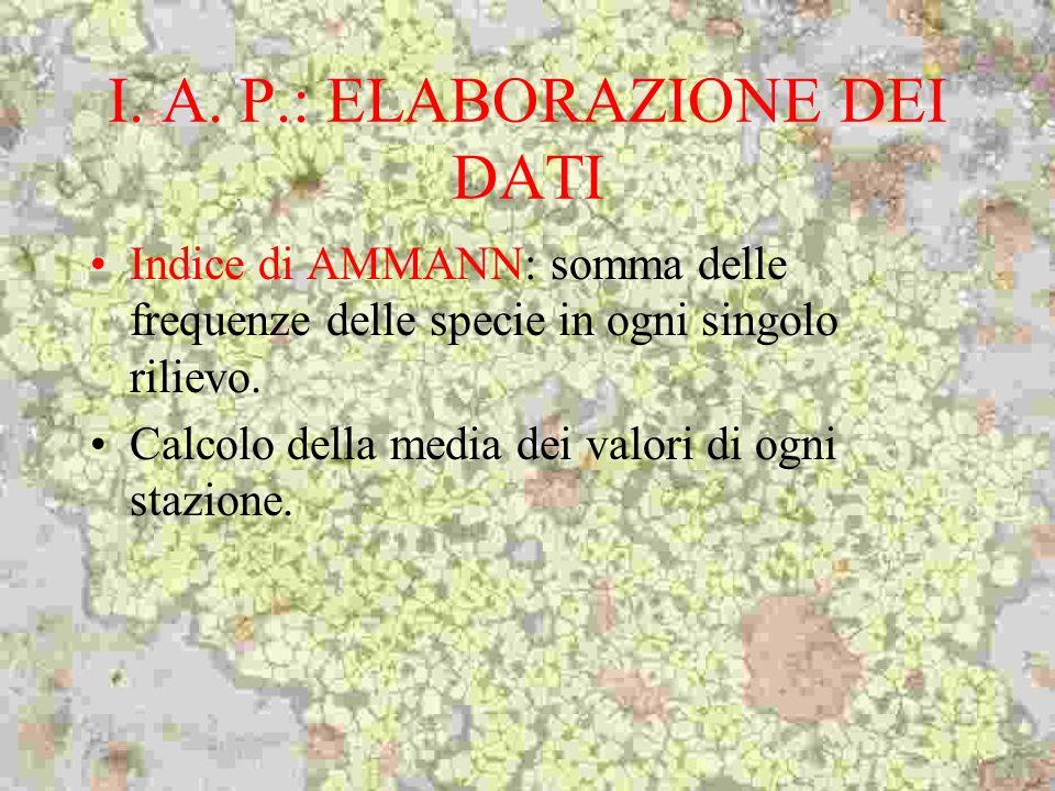 I. A. P.: ELABORAZIONE DEI DATI Indice di AMMANN: somma delle frequenze delle specie in ogni singolo rilievo. Calcolo della media dei valori di ogni s