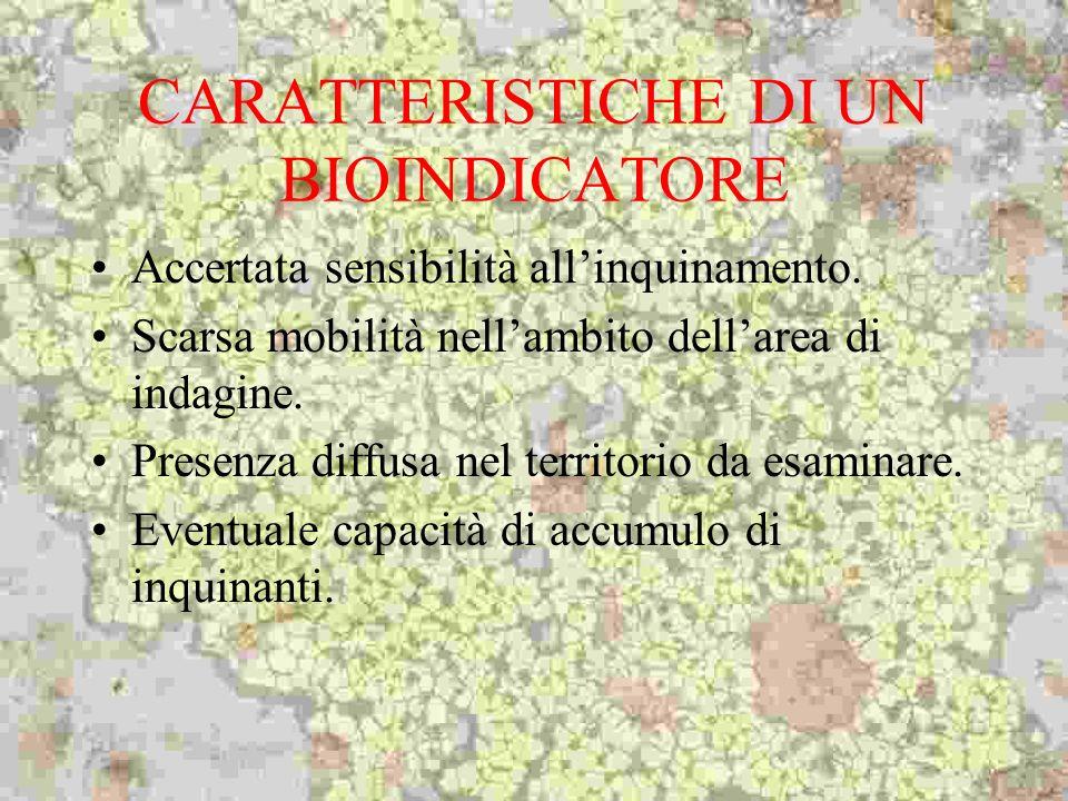 CARATTERISTICHE DI UN BIOINDICATORE Accertata sensibilità allinquinamento. Scarsa mobilità nellambito dellarea di indagine. Presenza diffusa nel terri