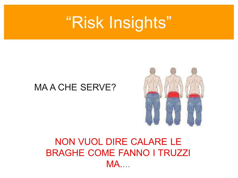 Risk Insights sempre colore nellinformazione MA A CHE SERVE.