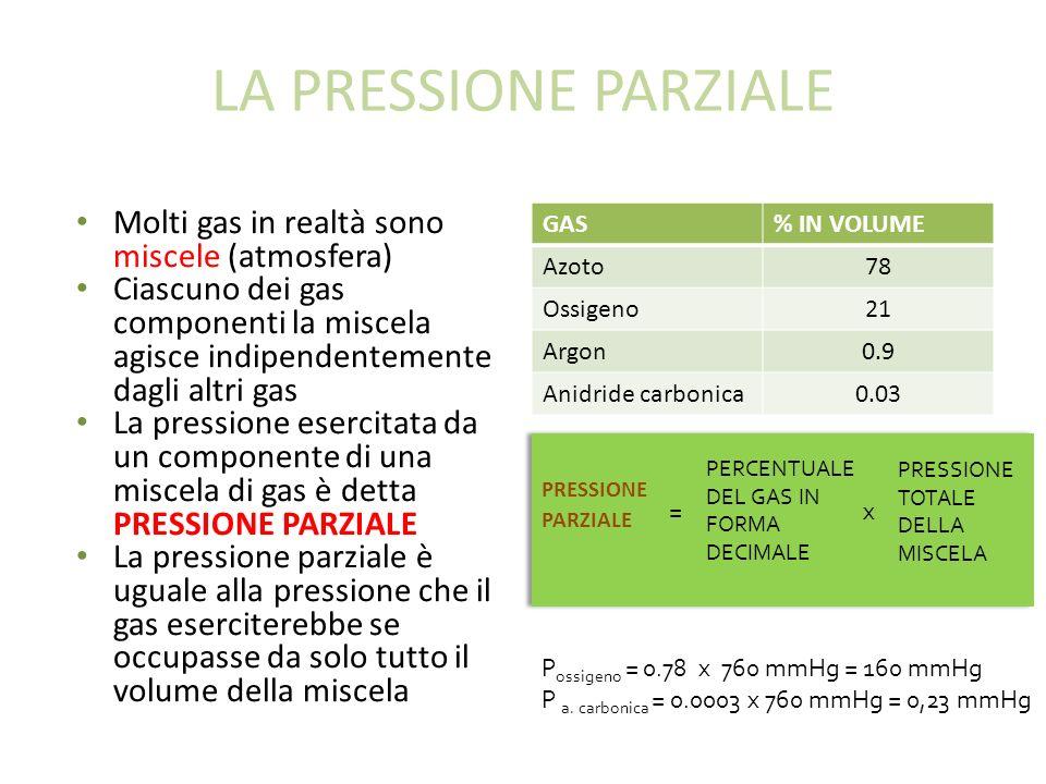 LA PRESSIONE PARZIALE Molti gas in realtà sono miscele (atmosfera) Ciascuno dei gas componenti la miscela agisce indipendentemente dagli altri gas La pressione esercitata da un componente di una miscela di gas è detta PRESSIONE PARZIALE La pressione parziale è uguale alla pressione che il gas eserciterebbe se occupasse da solo tutto il volume della miscela GAS% IN VOLUME Azoto78 Ossigeno21 Argon0.9 Anidride carbonica0.03 PRESSIONE PARZIALE PERCENTUALE DEL GAS IN FORMA DECIMALE PRESSIONE TOTALE DELLA MISCELA =x P ossigeno = 0.78 x 760 mmHg = 160 mmHg P a.