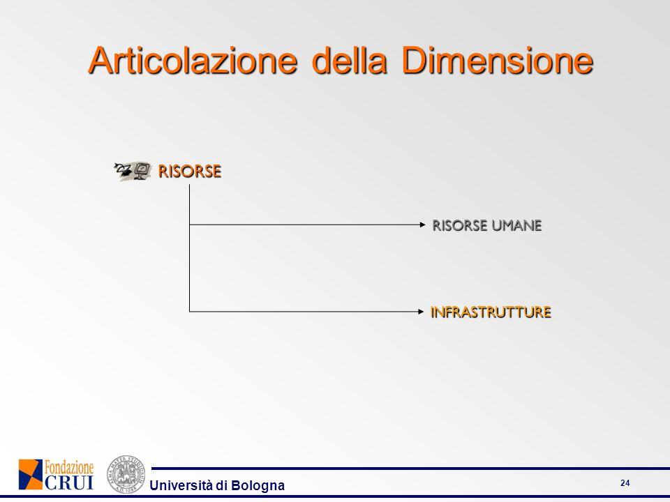 Università di Bologna 24 Articolazione della Dimensione RISORSE UMANE INFRASTRUTTURERISORSE