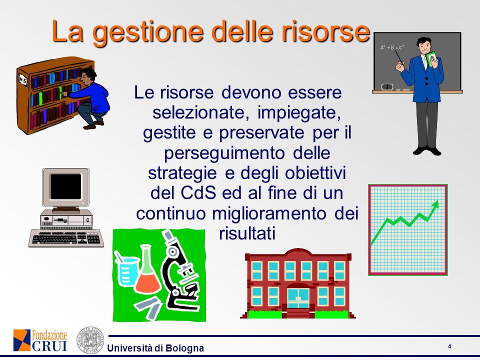 Università di Bologna 4 Le risorse devono essere selezionate, impiegate, gestite e preservate per il perseguimento delle strategie e degli obiettivi d