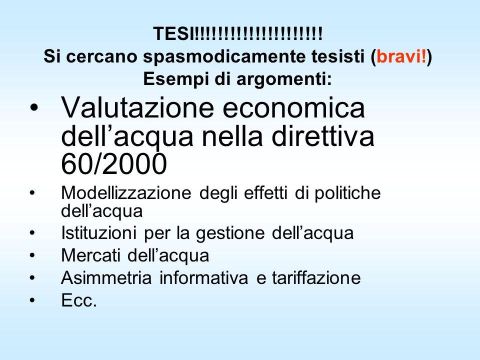 TESI!!!!!!!!!!!!!!!!!!!!! Si cercano spasmodicamente tesisti (bravi!) Esempi di argomenti: Valutazione economica dellacqua nella direttiva 60/2000 Mod