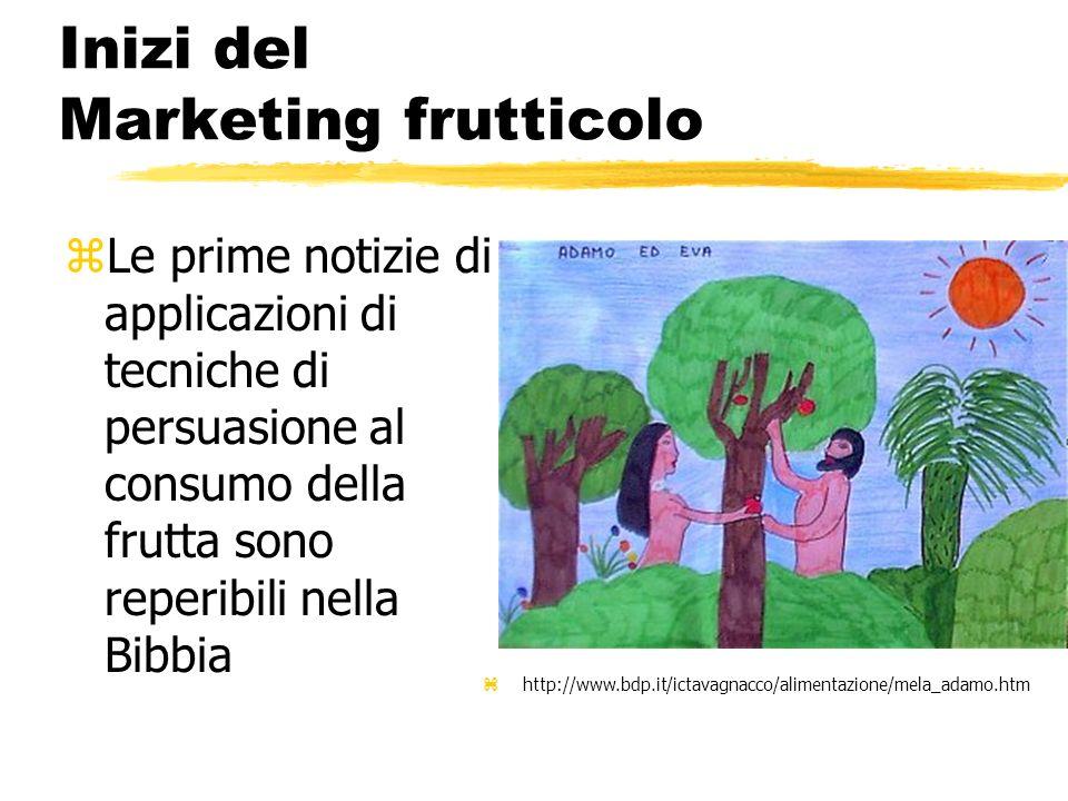 Principali ripartizioni (inerenti al marketing) zFrutta fresca (spesso problemi comuni con gli ortaggi) zFrutta trasformata ytrasformati di frutta destinati al consumo yingrediente di prodotti trasformati vari