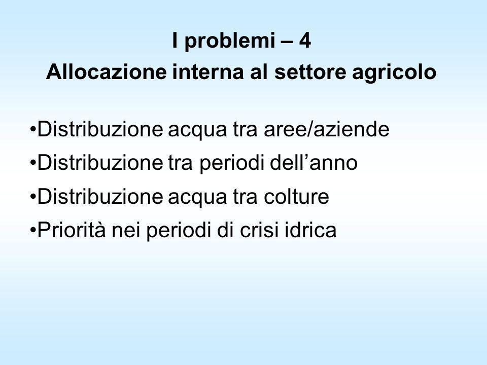 I problemi – 4 Allocazione interna al settore agricolo Distribuzione acqua tra aree/aziende Distribuzione tra periodi dellanno Distribuzione acqua tra