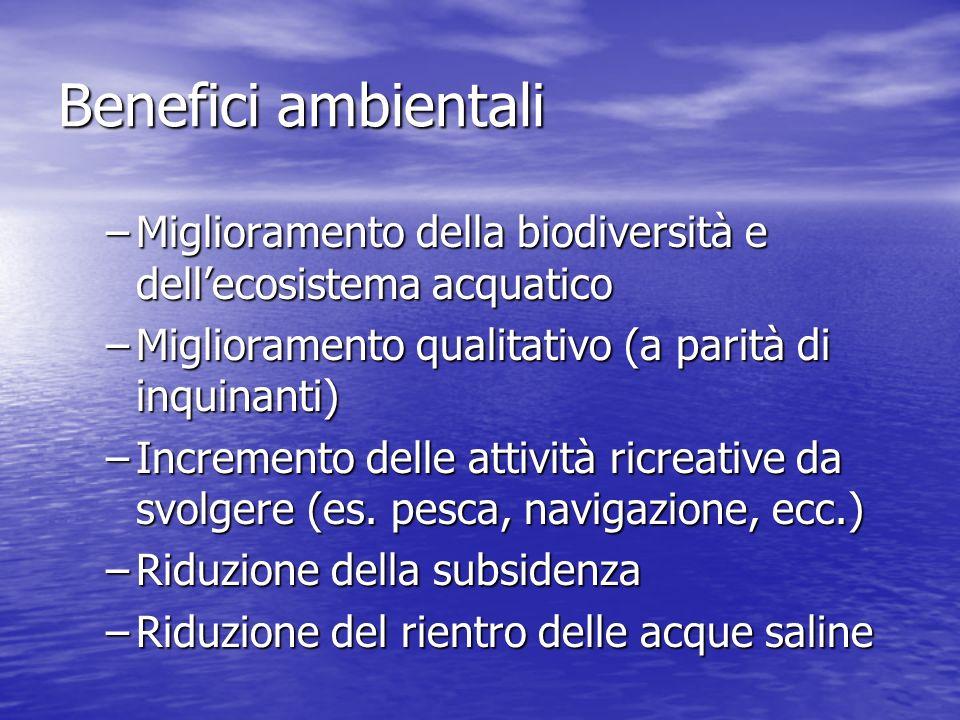 Benefici ambientali –Miglioramento della biodiversità e dellecosistema acquatico –Miglioramento qualitativo (a parità di inquinanti) –Incremento delle attività ricreative da svolgere (es.