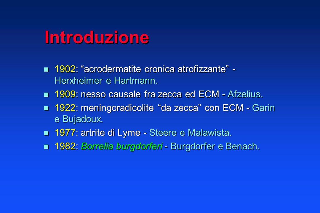 Eziologia Infezione batterica Infezione batterica Spirochetosi: Borrelia burgdorferi s.l.