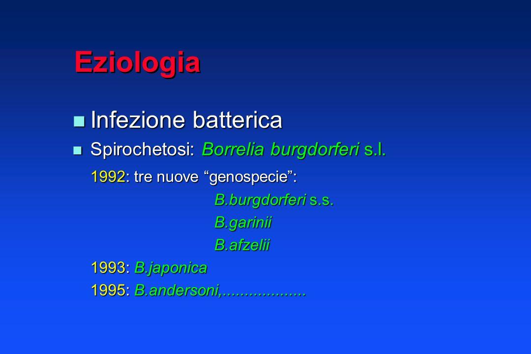 Epidemiologia Zoonosi Zoonosi Vettori: zecche Ixodidi Vettori: zecche Ixodidi Ixodes ricinus