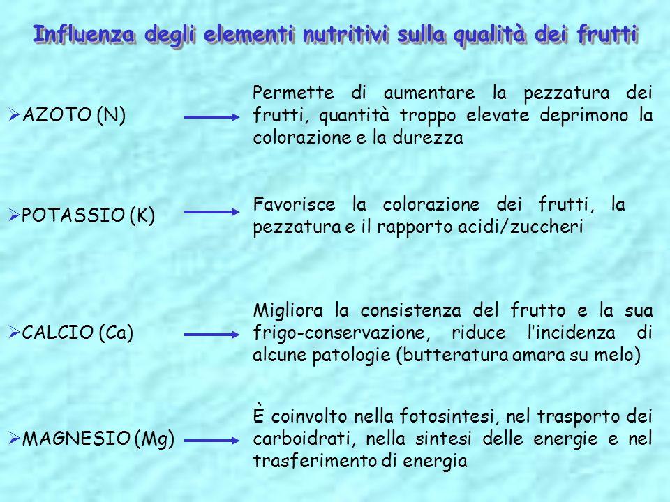 Influenza degli elementi nutritivi sulla qualità dei frutti AZOTO (N) Permette di aumentare la pezzatura dei frutti, quantità troppo elevate deprimono