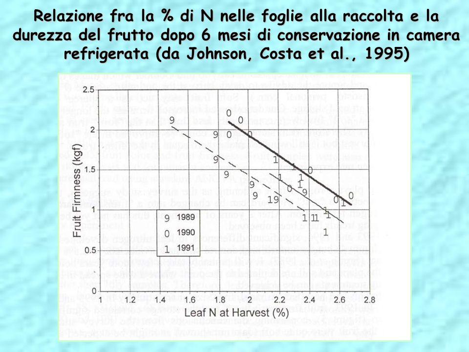 Relazione fra la % di N nelle foglie alla raccolta e la durezza del frutto dopo 6 mesi di conservazione in camera refrigerata (da Johnson, Costa et al
