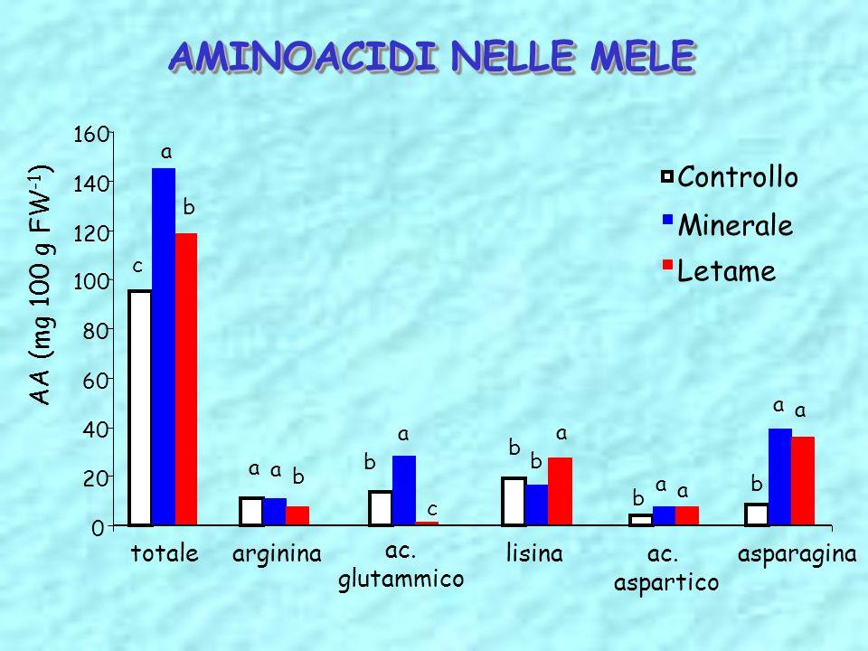 AMINOACIDI NELLE MELE 0 20 40 60 80 100 120 140 160 totalearginina ac. glutammico lisinaac. aspartico asparagina AA (mg 100 g FW -1 ) Controllo Minera
