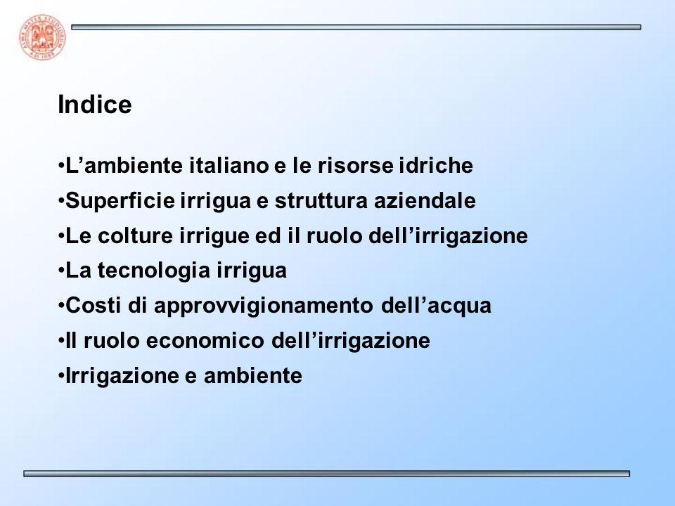 Indice Lambiente italiano e le risorse idriche Superficie irrigua e struttura aziendale Le colture irrigue ed il ruolo dellirrigazione La tecnologia i