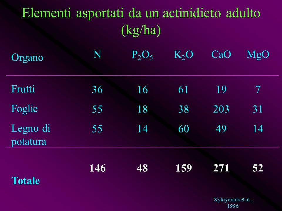 Elementi asportati da un actinidieto adulto (kg/ha) Organo Frutti Foglie Legno di potatura Totale N 36 55 146 P 2 O 5 16 18 14 48 K 2 O 61 38 60 159 C