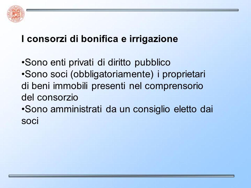 I consorzi di bonifica e irrigazione Sono enti privati di diritto pubblico Sono soci (obbligatoriamente) i proprietari di beni immobili presenti nel c