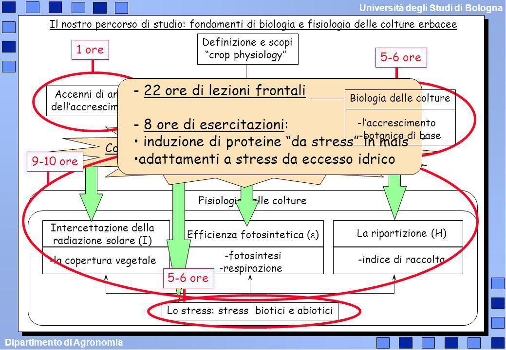 Dipartimento di Agronomia Università degli Studi di Bologna Come ho strutturato il corso 1) Nel limite del possibile ho cercato di ridurre sovrapposizioni (un delirio!!!) 2) Enfasi ad un percorso logico (non date troppo peso ai numeri!!!) 3) Per motivi di tempo ---> aspetti fondamentali 4) Alcune parti sono forse un po pesanti: preferisco fare eventualmente meno rispetto al programma stabilito 5) Il mio obiettivo didattico primario ---> alla fine del percorso dovreste essere in grado di rispondere ad una domanda che spesso sorge spontanea: A me, studente di biotecnologie agrarie, a cosa serve conoscere la crop physiology??