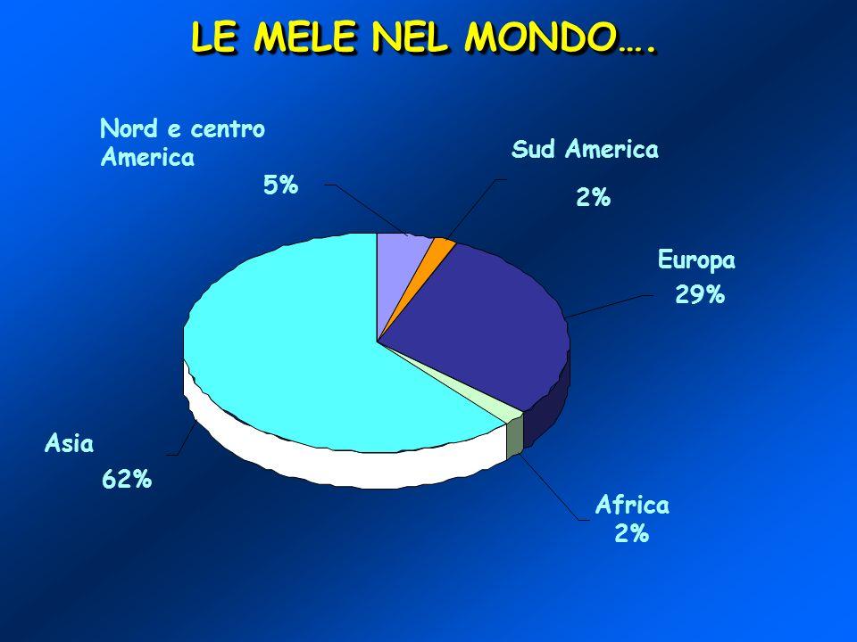 ITALIA2° PAESE DELLUNIONE EUROPEA PER QUANTO RIGUARDA LA PRODUZIONE (2.2 milioni di ton.) DETIENE IL 4% DELLA PRODUZIONE MONDIALE DistribuzioneTrend 93 – 00 Golden Delicious Jonagold Red Delicious Gala Fuji 31% 12% + 199 % + 362 % - 28 % + 34 % 9 % 8 % 1 % - 5 % U.E.