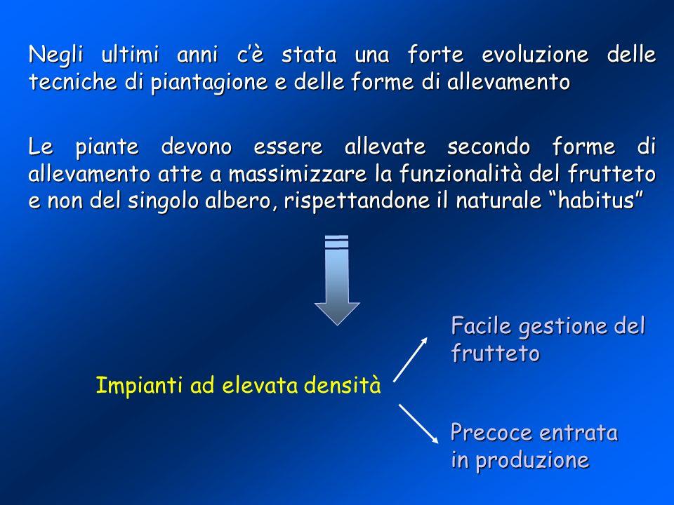FORME DI ALLEVAMENTO E DISTANZE DI IMPIANTO CONSIGLIATI DAI D.P.I.