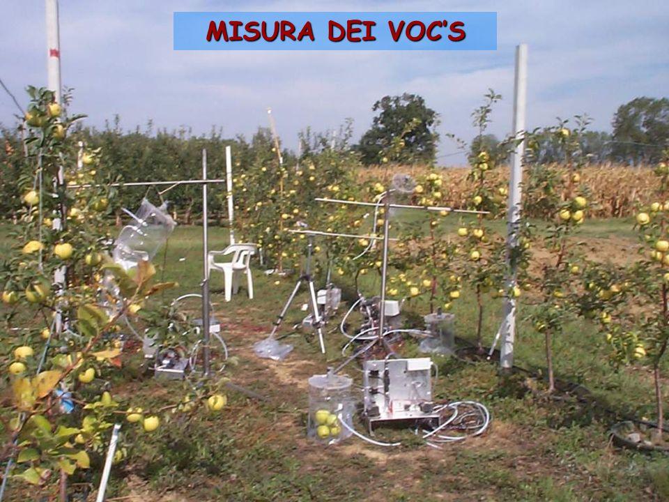 MISURA DEI VOCS