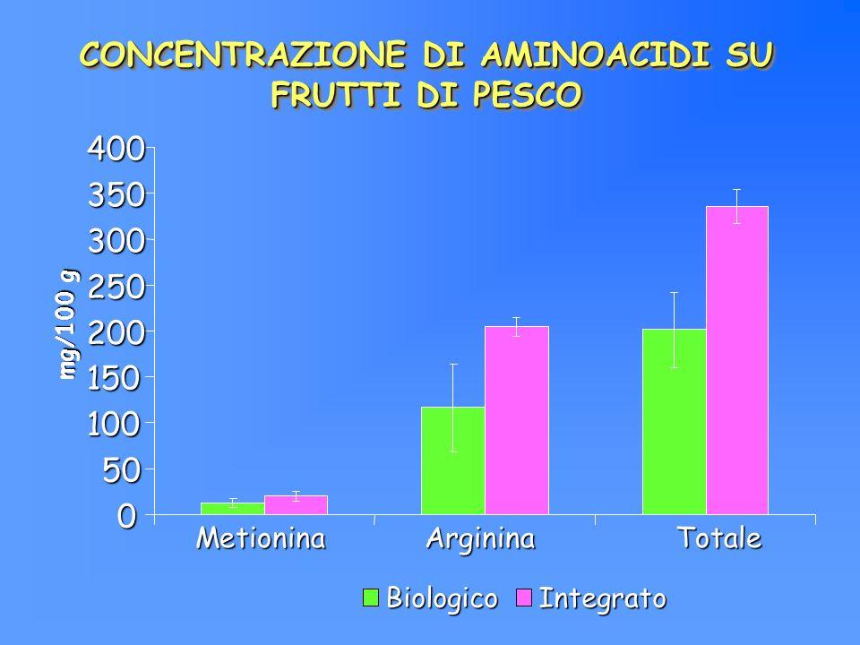 CONCENTRAZIONE DI AMINOACIDI SU FRUTTI DI PESCO 0 50 100 150 200 250 300 350 400 mg/100 g BiologicoIntegrato MetioninaArgininaTotale