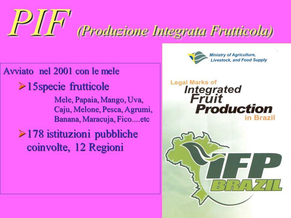 PIF (Produzione Integrata Frutticola) Avviato nel 2001 con le mele 15specie frutticole 15specie frutticole Mele, Papaia, Mango, Uva, Caju, Melone, Pes