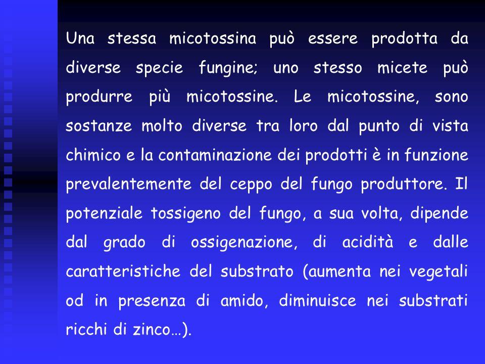 Una stessa micotossina può essere prodotta da diverse specie fungine; uno stesso micete può produrre più micotossine.
