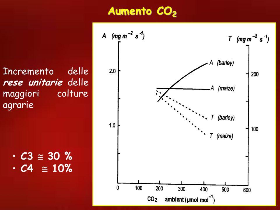 Incremento delle rese unitarie delle maggiori colture agrarie C3 30 % C4 10% Aumento CO 2